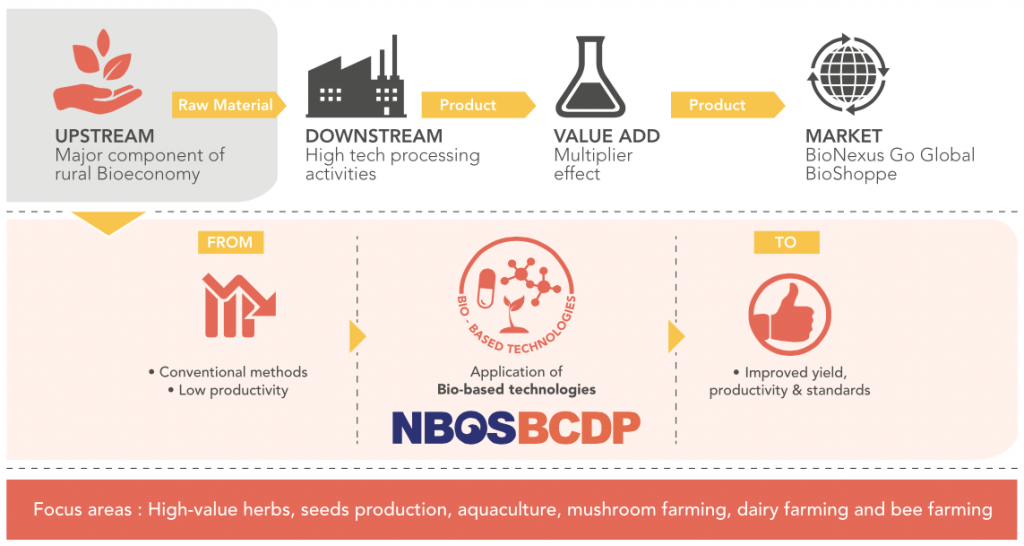Implementation of BCDP